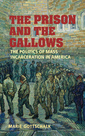 Couverture de l'ouvrage The prison and the gallows: the politics of mass incarceration in america