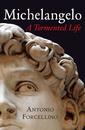 Couverture de l'ouvrage Michelangelo: a turbulent life