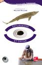 Couverture de l'ouvrage Esturgeons et caviar