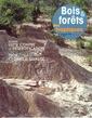 Couverture de l'ouvrage Bois et forêts des tropiques N° 293 3° trimestre 2007 : lutte contre la désertification / Teck, clones de qualité