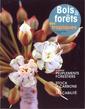 Couverture de l'ouvrage Bois et forêts des tropiques N° 294 4° trimestre 2007 : peuplements forestiers, stock de carbone, traçabilité