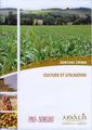Couverture de l'ouvrage Culture et utilisation. Sorgho grain