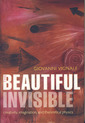 Couverture de l'ouvrage The beautiful invisible: creativity, imagination & theoretical physics