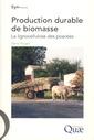 Couverture de l'ouvrage Production durable de biomasse. La lignocellulose des poacées (Coll. synthèses)